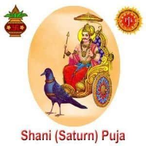 Shani Puja by Pavitra Jyotish Kendra