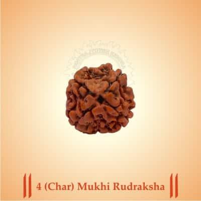 4-CHAR-MUKHI RUDRAKSHA BY PAVITRAJYOTISH