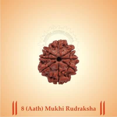 8-AATH-MUKHI RUDRAKSHA BY PAVITRAJYOTISH