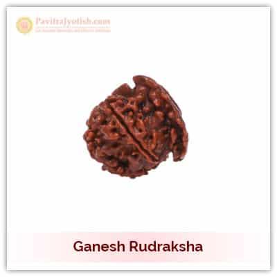 Original Nepali Ganesh Rudraksha