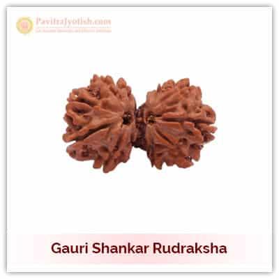 Original Nepali Gauri Shankar Rudraksha