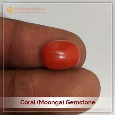 Original Moonga Coral Gemstone
