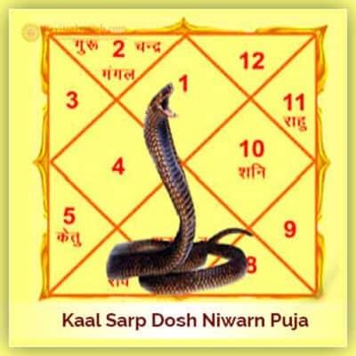 Kaalsarp Dosh Niwarn Puja